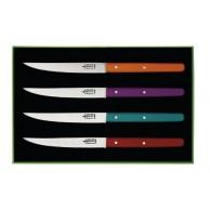 """Coffret  4 couteaux de table """"Néo"""" manches bois (coloris assortis) G.DAVID"""
