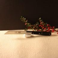 Couteau le Langres Manche rhodoid noir lame carbone AU SABOT