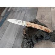 Couteau Le Moustier LOUIS CAU Manche genévrier 8 cm